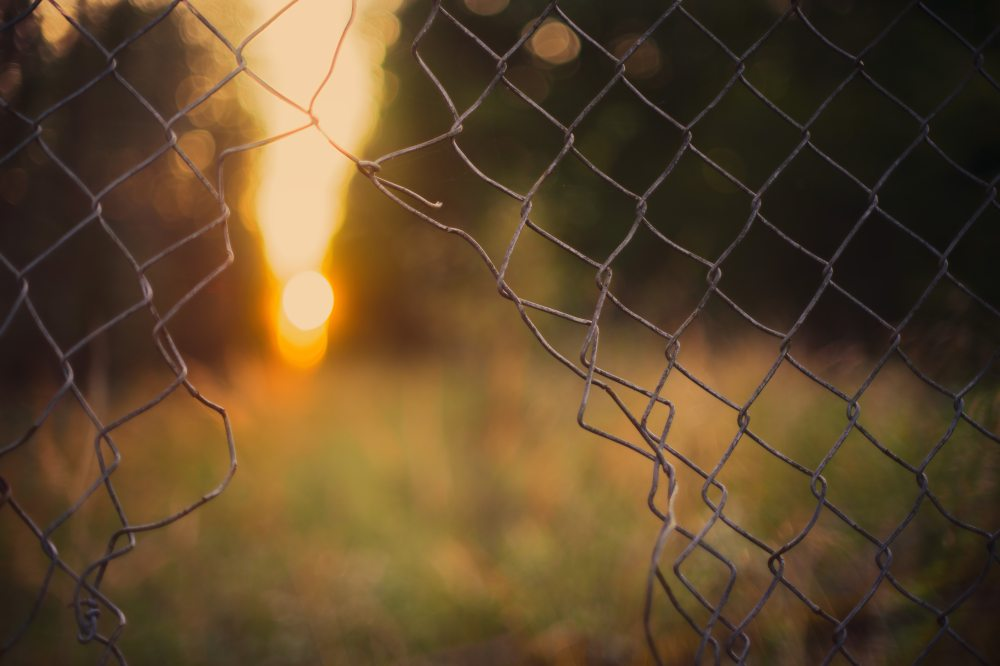 blurred-background-colors-cyclone-fence-1133499.jpg